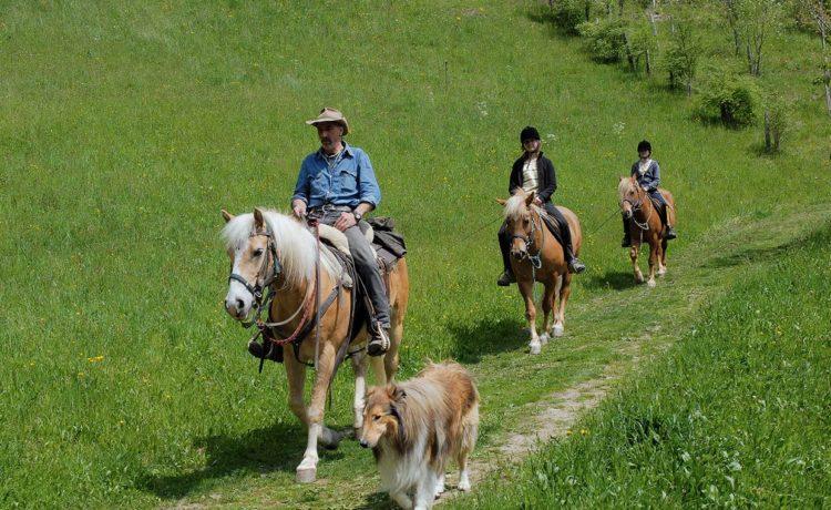Ausritte mit Pferden